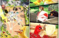 《愤怒的小鸟:行动》预热活动早早开启