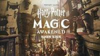 哈利波特魔法覺醒怎么在電腦上玩 哈利波特魔法覺醒電腦版教程