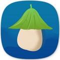 冬瓜视频app